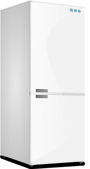 Comprar un congelador de refrigerador de cocina: consejos para segui