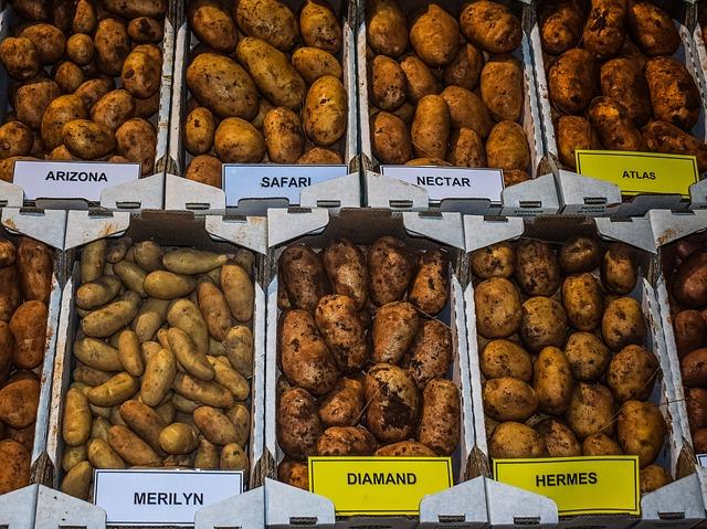 Una astilladora de patatas manual – características y usos que tien